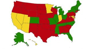 Do You Know Your State's Windshield Law?